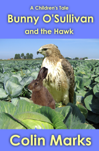 Bunny O'Sullivan and the Hawk
